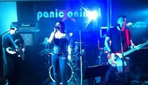 panic-gallery-1
